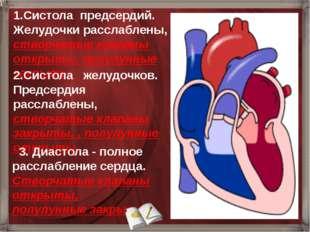 1.Систола предсердий. Желудочки расслаблены, створчатые клапаны открыты, полу