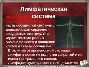 Лимфатическая система (лат.systema lymphaticum) часть сосудистой системы , д