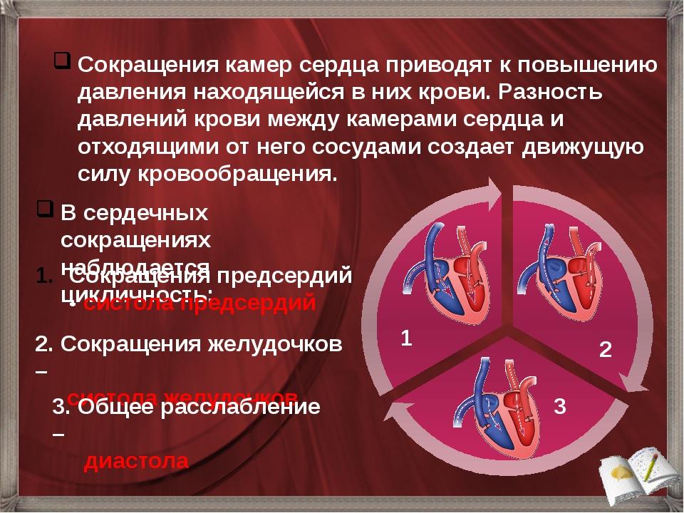 В сердечных сокращениях наблюдается цикличность: Сокращения камер сердца прив...