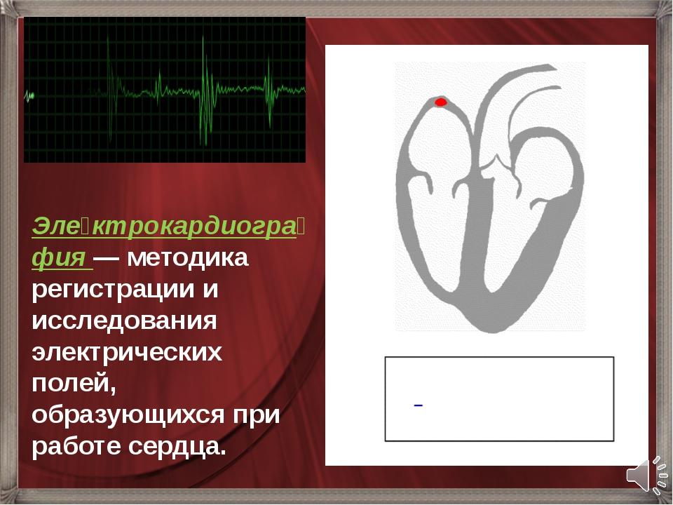 Эле́ктрокардиогра́фия— методика регистрации и исследования электрических пол...