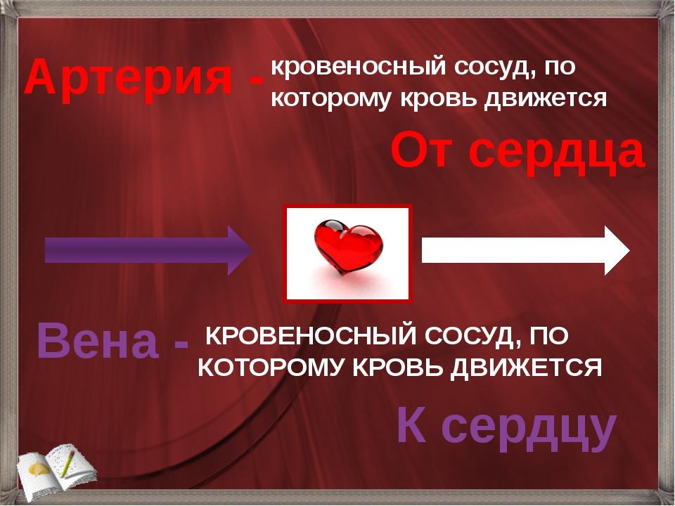 Артерия - кровеносный сосуд, по которому кровь движется От сердца КРОВЕНОСНЫЙ...