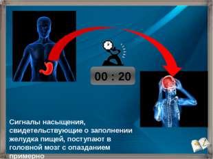 00 : 20 Сигналы насыщения, свидетельствующие о заполнении желудка пищей, пос