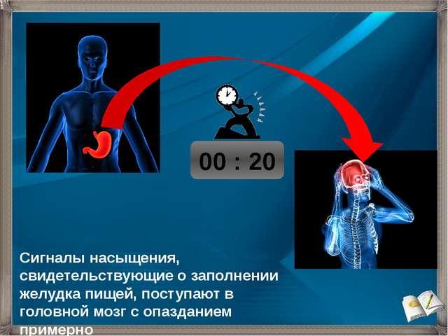 00 : 20 Сигналы насыщения, свидетельствующие о заполнении желудка пищей, пос...