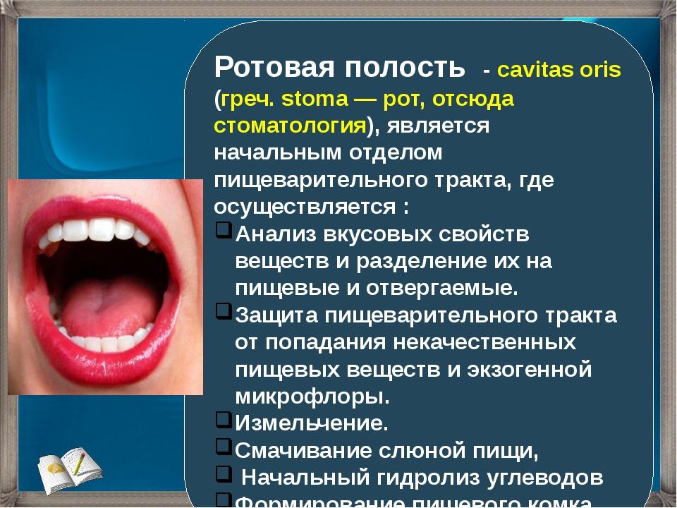 Ротовая полость - cavitas oris (греч. stoma — рот, отсюда стоматология), явля...