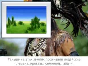 Раньше на этих землях проживали индейские племена: ирокезы, семинолы, апачи.