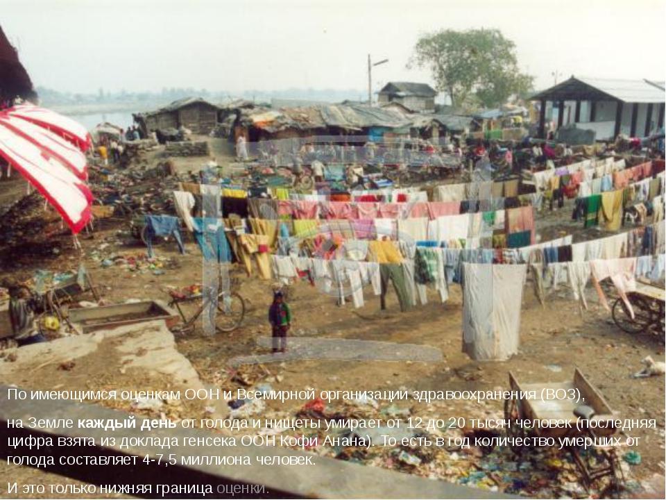 По имеющимся оценкам ООН и Всемирной организации здравоохранения (ВОЗ), на Зе...