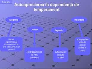 Autoaprecierea în dependență de temperament Des se Supraapreciază Vorbește d/