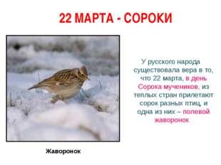 22 МАРТА - СОРОКИ У русского народа существовала вера в то, что 22 марта, в
