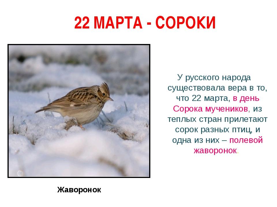 22 МАРТА - СОРОКИ У русского народа существовала вера в то, что 22 марта, в...
