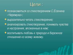 Цели : познакомиться со стихотворением С.Есенина «Черемуха»; выразительно чит