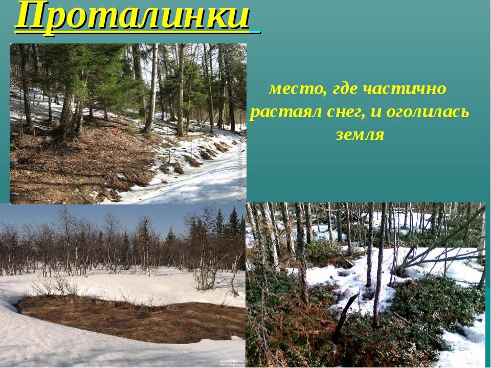 Проталинки место, где частично растаял снег, и оголилась земля