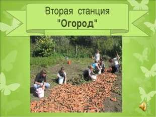 """Вторая станция """"Огород"""""""
