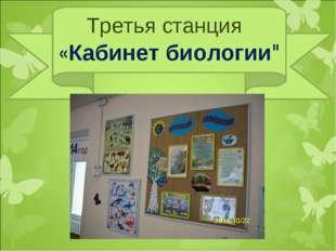 """Третья станция «Кабинет биологии"""""""