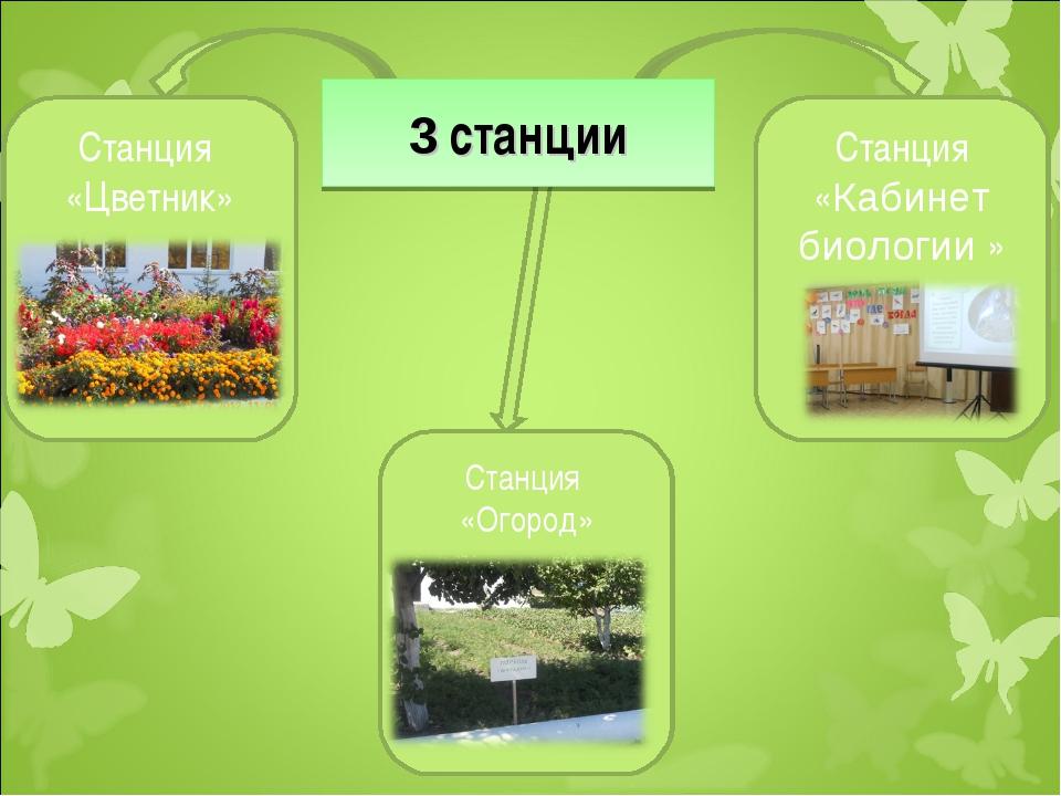 Станция «Цветник» Станция «Огород» 3 станции Станция «Кабинет биологии »