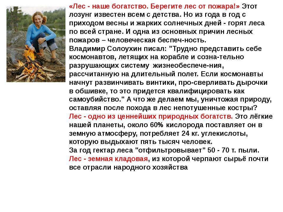 «Лес - наше богатство. Берегите лес от пожара!» Этот лозунг известен всем с д...