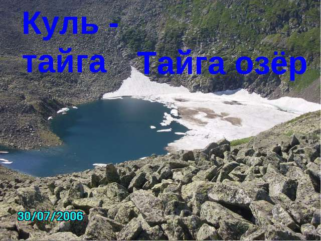 Тайга озёр Куль - тайга