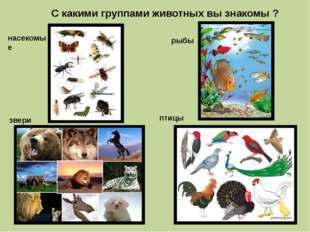С какими группами животных вы знакомы ? рыбы насекомые птицы звери