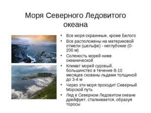 Моря Северного Ледовитого океана Все моря окраинные, кроме Белого Все располо