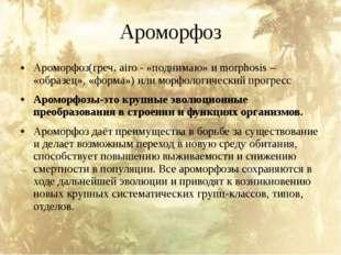 Ароморфоз Ароморфоз(греч. airo - «поднимаю» и morphosis – «образец», «форма»)