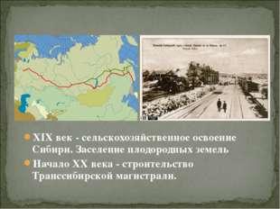 XIX век - сельскохозяйственное освоение Сибири. Заселение плодородных земель