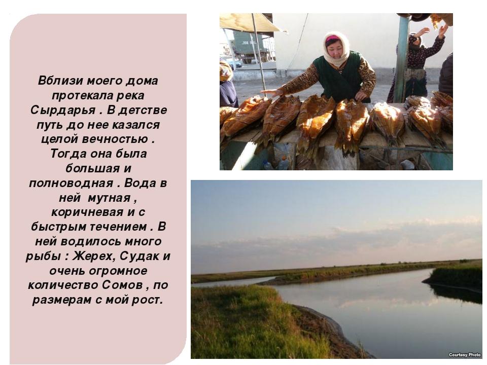 Вблизи моего дома протекала река Сырдарья . В детстве путь до нее казался цел...