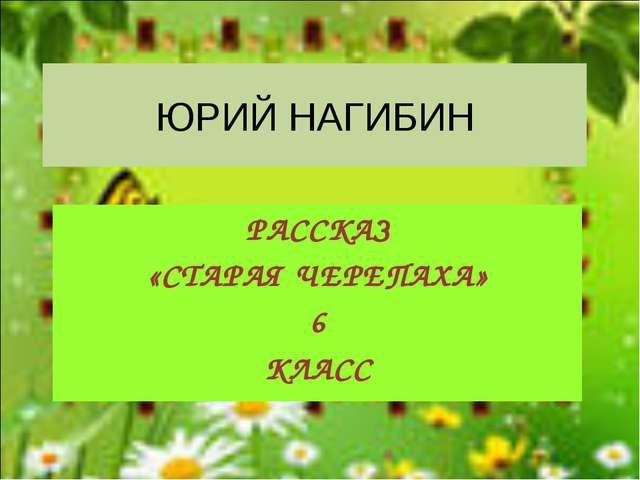 ЮРИЙ НАГИБИН РАССКАЗ «СТАРАЯ ЧЕРЕПАХА» 6 КЛАСС