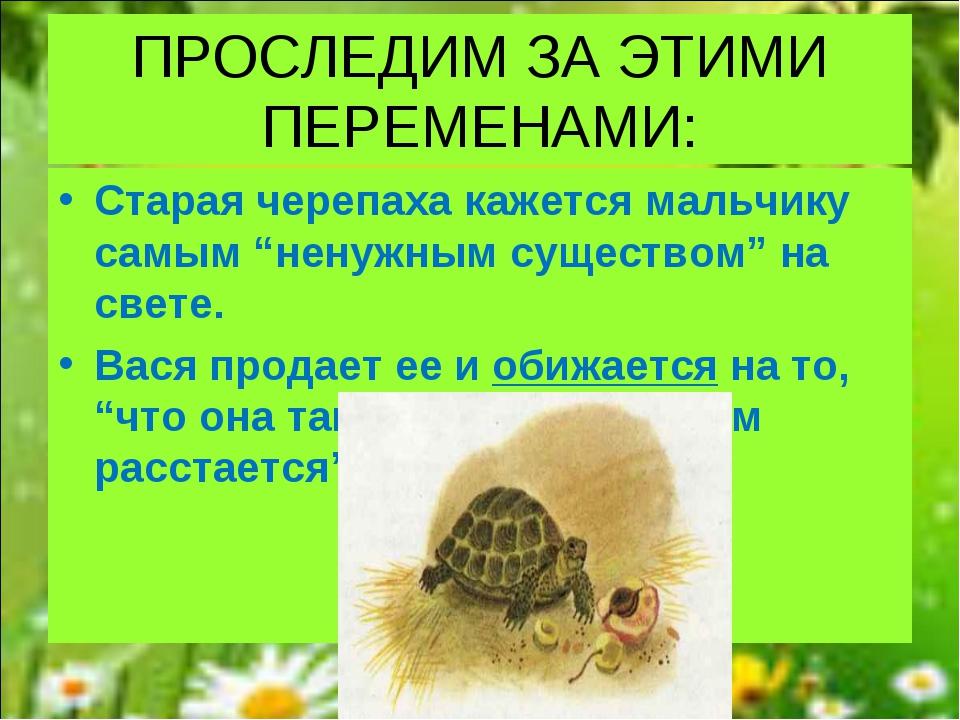 """ПРОСЛЕДИМ ЗА ЭТИМИ ПЕРЕМЕНАМИ: Старая черепаха кажется мальчику самым """"ненужн..."""