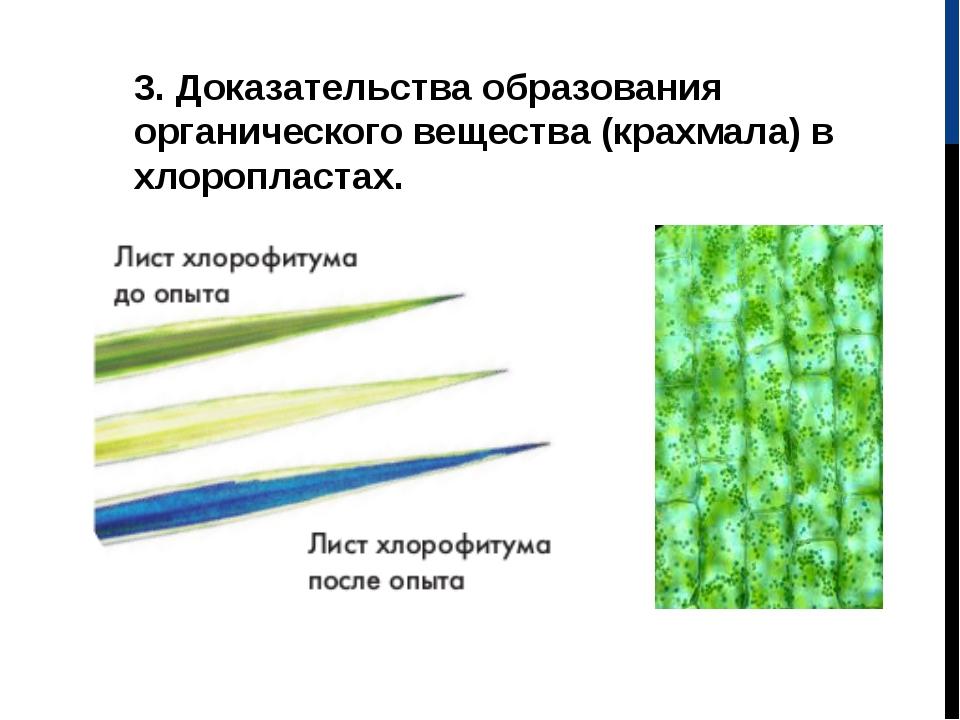 3. Доказательства образования органического вещества (крахмала) в хлоропласта...
