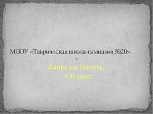 Капралов Никита, 5-Б класс МБОУ «Таврическая школа-гимназия №20»