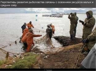 Перспективы развития рыболовства связаны с освоением ресурсов малых и средних