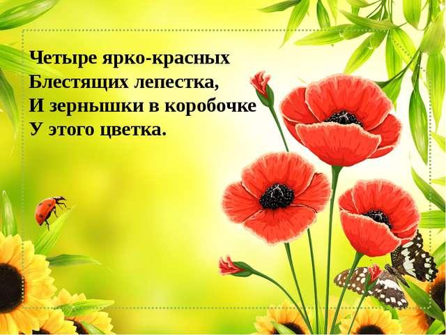 Четыре ярко-красных Блестящих лепестка, И зернышки в коробочке У этого цве...
