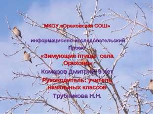 МКОУ «Ореховская СОШ» информационно-исследовательский Проект «Зимующие птицы