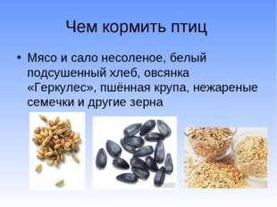 Чем кормить птиц Мясо и сало несоленое, белый подсушенный хлеб, овсянка «Герк