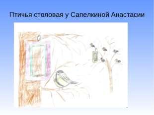 Птичья столовая у Сапелкиной Анастасии