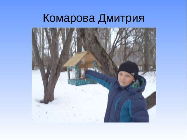 Комарова Дмитрия
