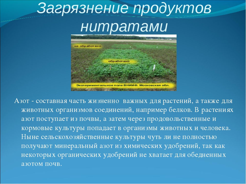 Загрязнение продуктов нитратами Азот - составная часть жизненно важных для ра...