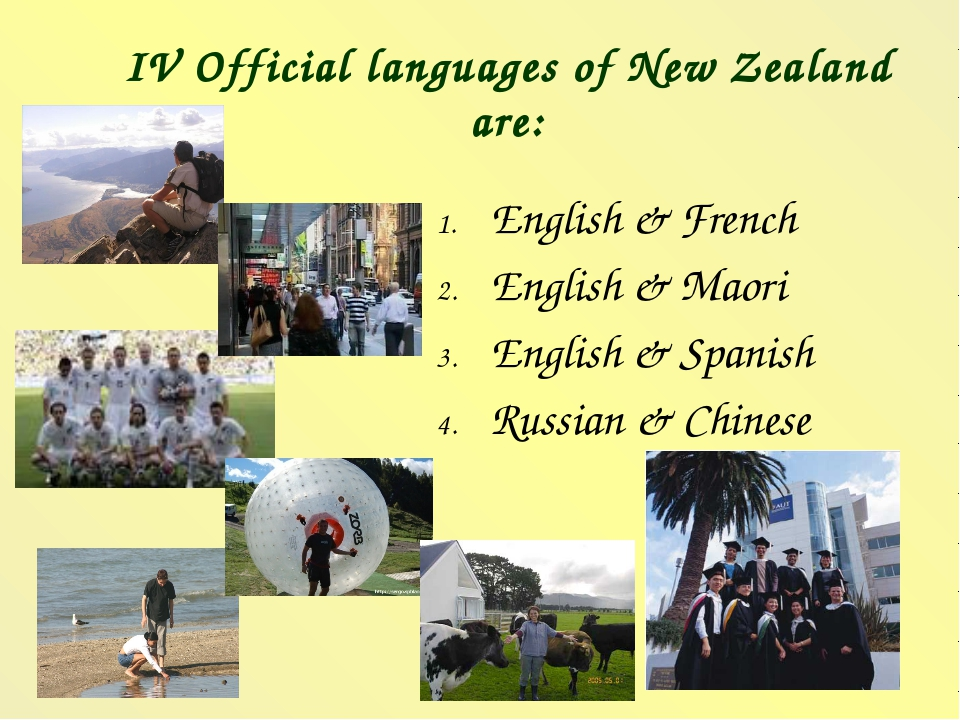 IV Official languages of New Zealand are: English & French English & Maori En...