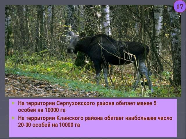 На территории Серпуховского района обитает менее 5 особей на 10000 га На терр...