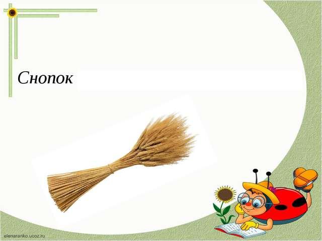 Снопок – связка стеблей с колосьями.