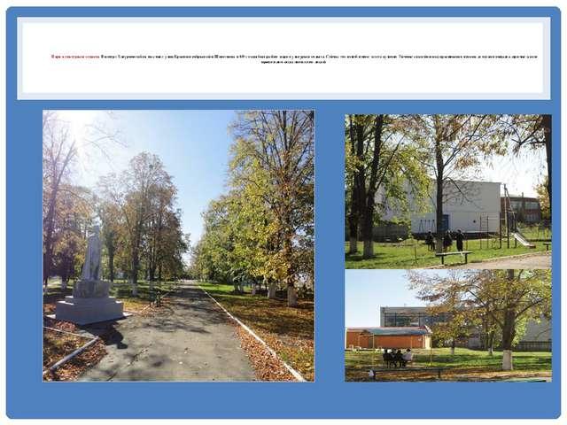 Парк культуры и отдыха В центре Хакуринохабля, на стыке улиц Краснооктябрьск...