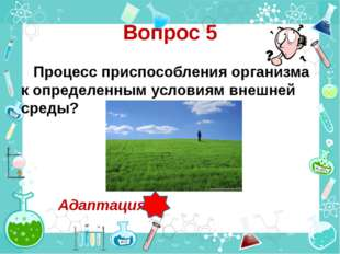 Вопрос 5 Процесс приспособления организма к определенным условиям внешней сре