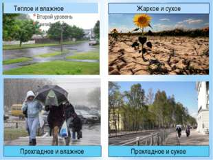 Теплое и влажное Жаркое и сухое Прохладное и влажное Прохладное и сухое