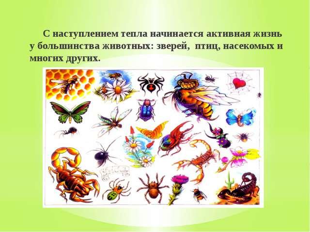 С наступлением тепла начинается активная жизнь у большинства животных: звере...