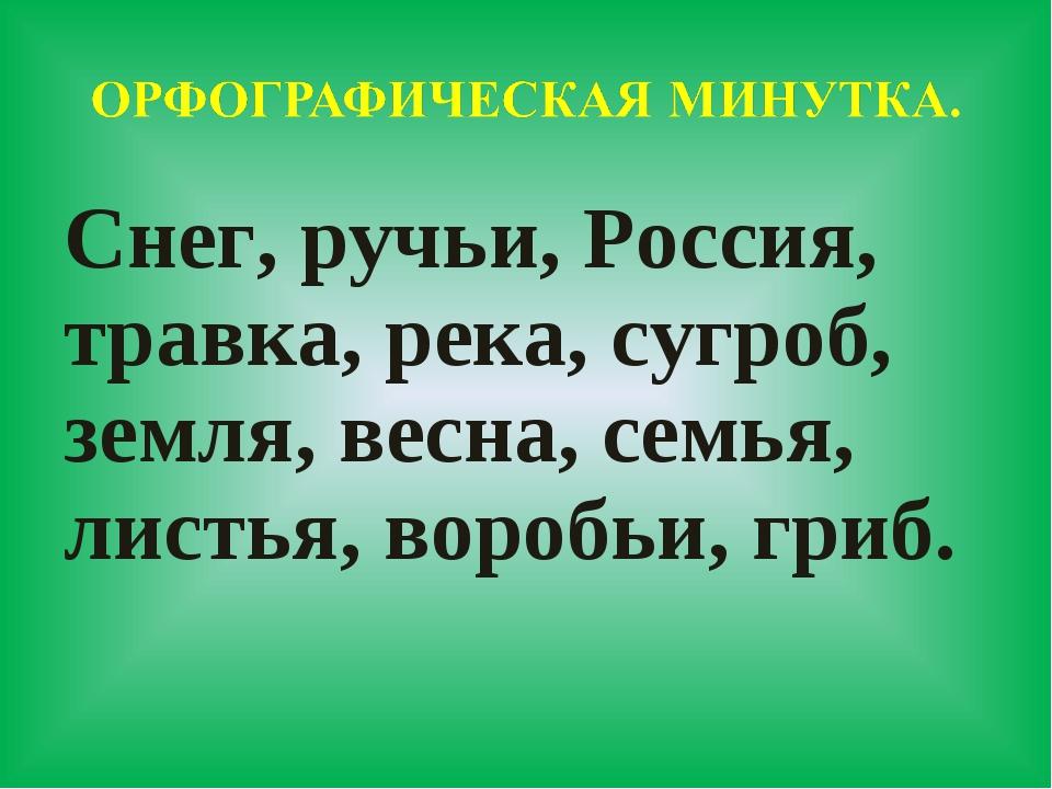 Снег, ручьи, Россия, травка, река, сугроб, земля, весна, семья, листья, вороб...