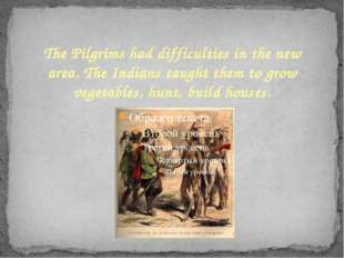 The Pilgrims had difficulties in the new area. The Indians taught them to gro