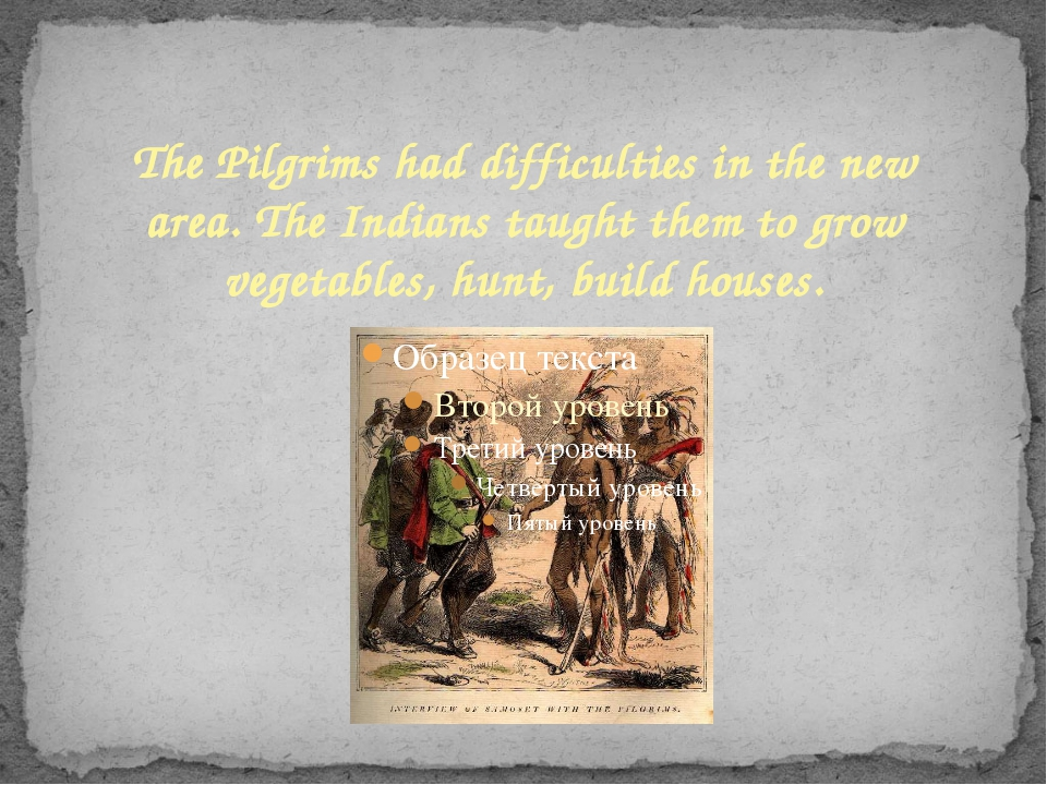 The Pilgrims had difficulties in the new area. The Indians taught them to gro...