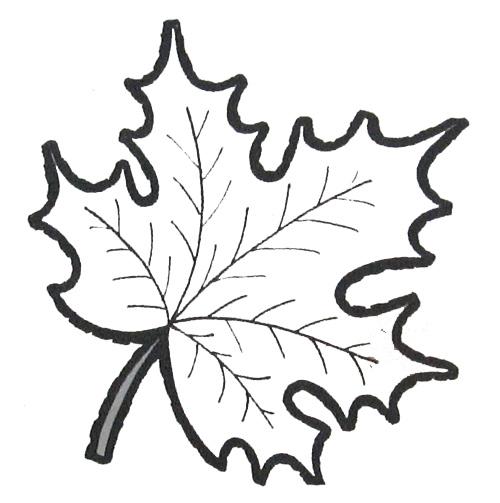 Раскраски листья Играем и развиваемся