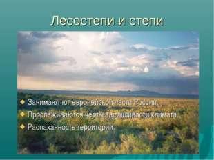 Лесостепи и степи Занимают юг европейской части России. Прослеживаются черты