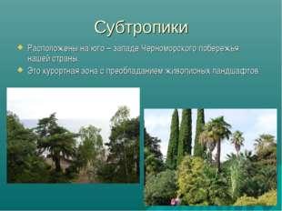 Субтропики Расположены на юго – западе Черноморского побережья нашей страны.