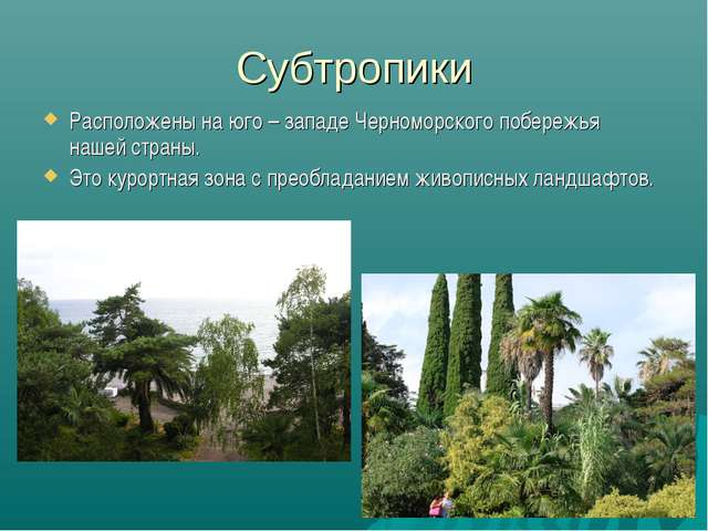 Субтропики Расположены на юго – западе Черноморского побережья нашей страны....